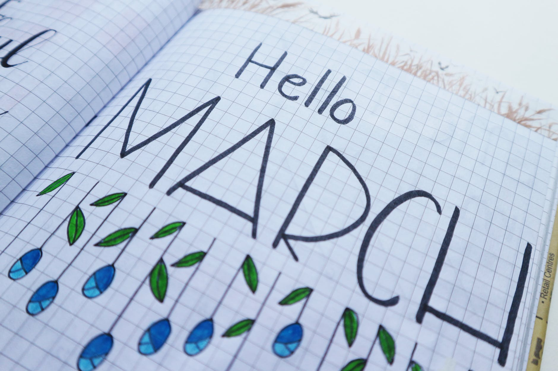 Hello March Journal