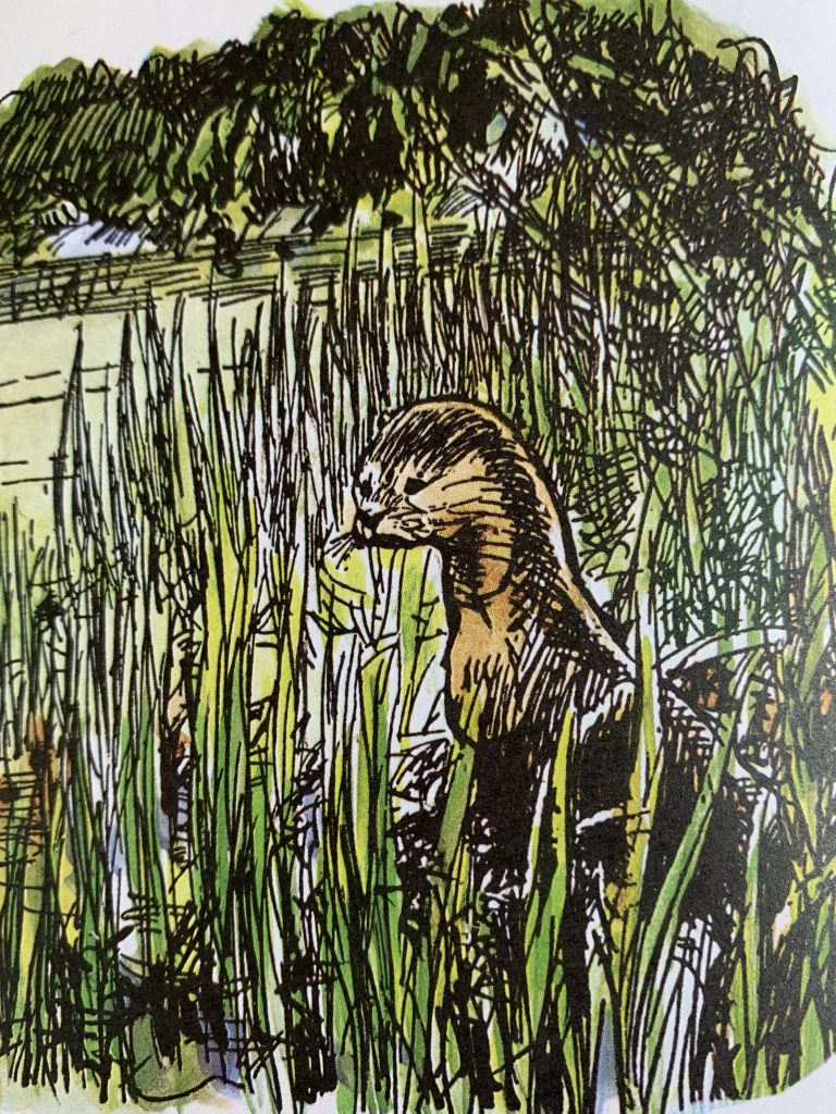 Otter from The Wind in the Willows