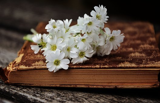 Classic Book Flowers