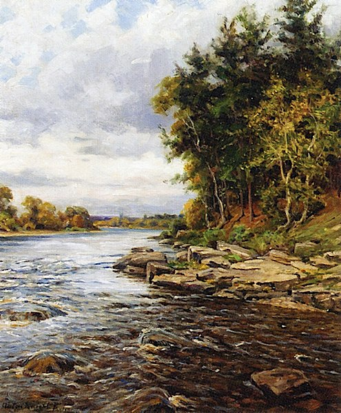 Pine Trees by the River