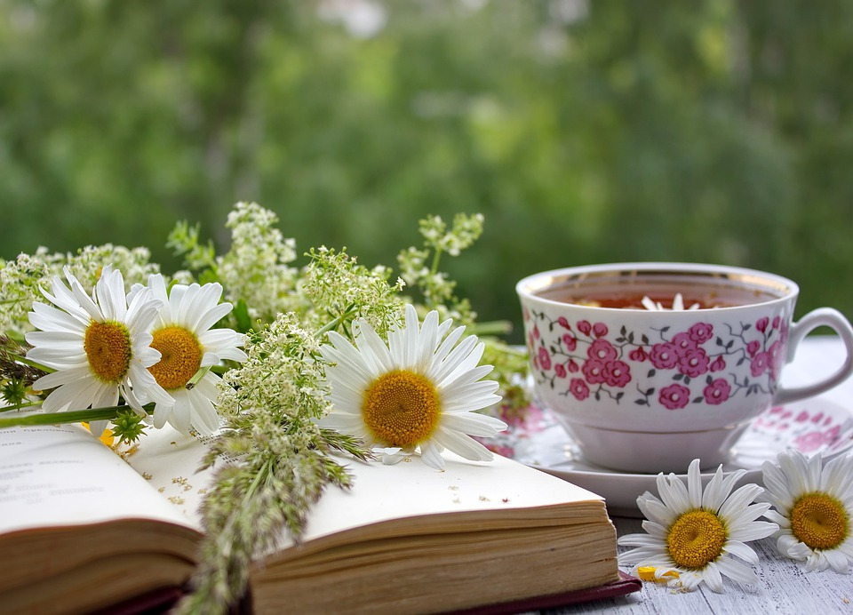 Summer Still Life With Books