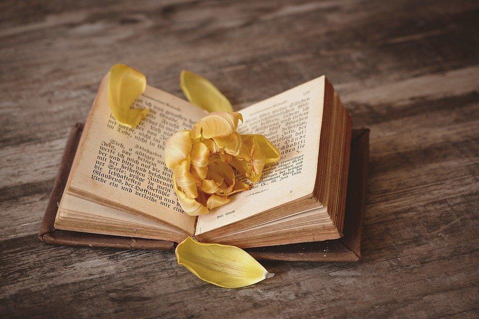 Flower Petals Book